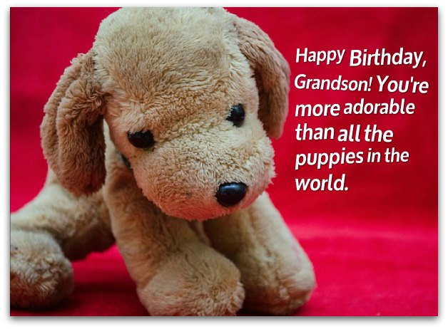 Grandson Birthday Wishes - Birthday Messages for Grandsons