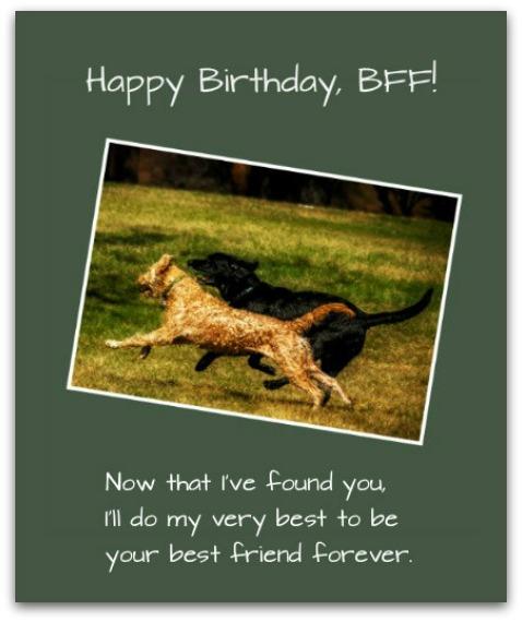 Friend Birthday Messages - Birthday Wishes for BFFs