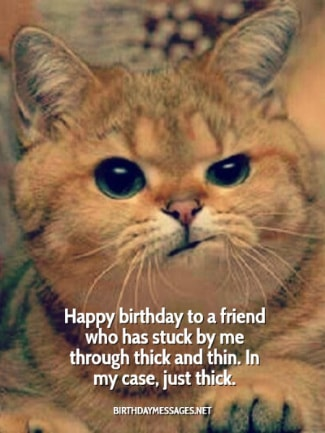 Funny Birthday Wishes 250 Uniquely Messages