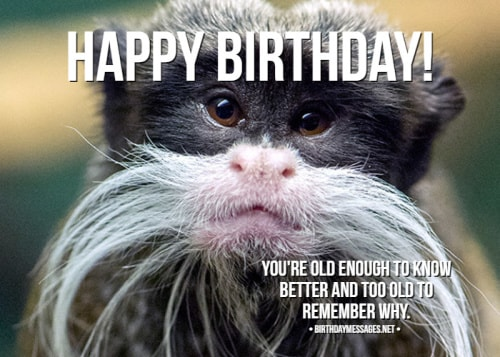 Funny Birthday Wishes & Birthday Quotes: Funny Birthday ...