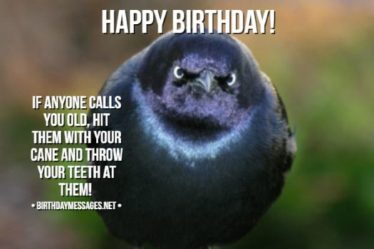Funny Birthday Wishes Birthday Quotes Funny Birthday Messages