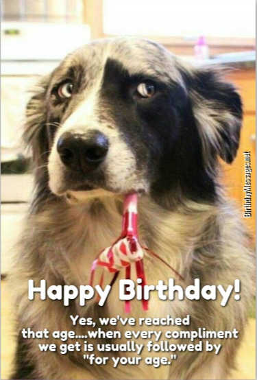Funny Birthday Wishes Funny Birthday Messages – Humorous Birthday Greeting