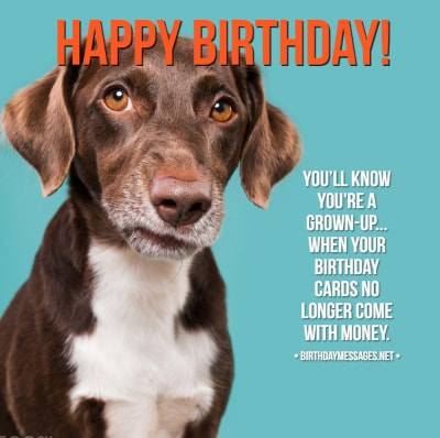 Funny Birthday Wishes: 250+ Uniquely Funny Messages