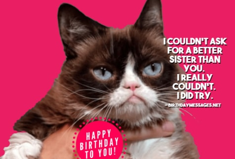 Sister Birthday Wishes - Funny Birthday Messages & Images for Sisters